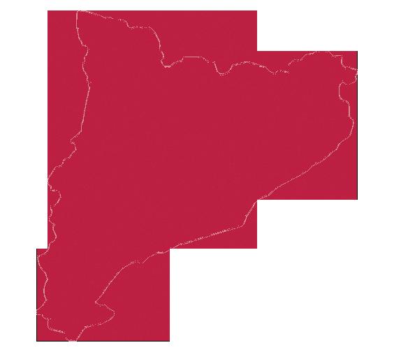 Reconèixer el compromís amb la llengua i el país: PREMIS JOAN COROMINES
